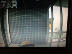 別の日に撮ったモニター画像。黄色い帽子が見えています。